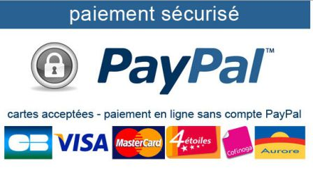 paiement vip paypal